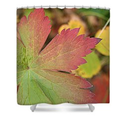 A Touch Of Fall Shower Curtain