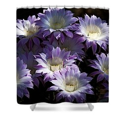 A Touch Of Lavender  Shower Curtain by Saija  Lehtonen