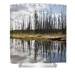 Shower Curtain featuring the photograph A Tranquil River With A Reflection by Susan Dykstra