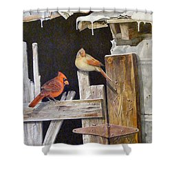 A Visit To Daddy's Barn  Sold Shower Curtain