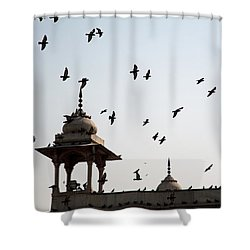 A Whole Flock Of Pigeons On The Top Of The Ramparts Of The Red Fort In New Delhi Shower Curtain by Ashish Agarwal