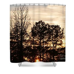 A Winter's Eve Shower Curtain by Maria Urso