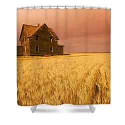 Abandoned Farm House, Wind-blown Durum Shower Curtain by Dave Reede