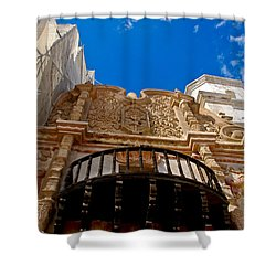Above The Front Entry San Xavier Mission Shower Curtain by Jon Berghoff