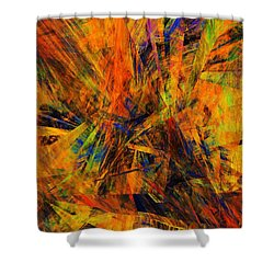Abstract 100611 Shower Curtain by David Lane