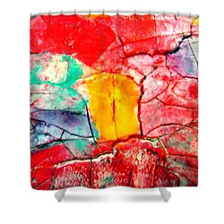 Abstract Accent 2 Shower Curtain