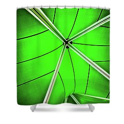 Abstract Of Green Shower Curtain by Meirion Matthias