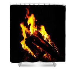 Abstract Phoenix Fire Shower Curtain