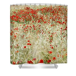Abstract Poppies Shower Curtain by Guido Montanes Castillo