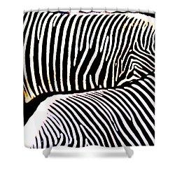 Abstract Zebra 002 Shower Curtain by Lon Casler Bixby