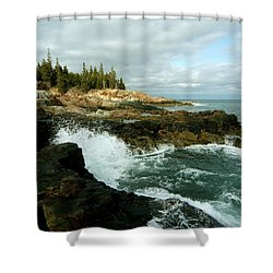 Acadia On The Shore Shower Curtain by Rick Frost