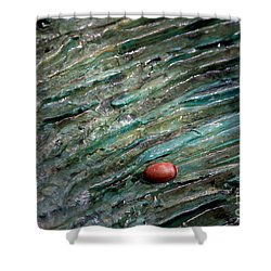 Acorn Fountain Shower Curtain