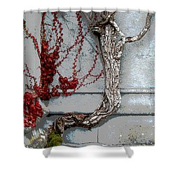 Shower Curtain featuring the photograph Adare Ivy by Charlie and Norma Brock