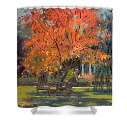 Shower Curtain featuring the painting Adirondack Chairs by Donald Maier
