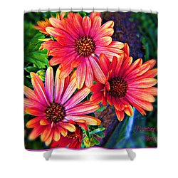 African Daisy Shower Curtain