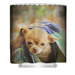 After The Bath Shower Curtain by Laurie Search