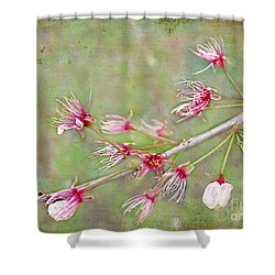 After The Party's Over Shower Curtain by Judi Bagwell