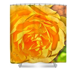 Shower Curtain featuring the photograph After The Rain by Michael Frank Jr