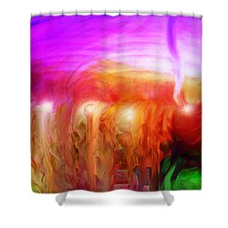 After The Storm Shower Curtain by Linda Sannuti
