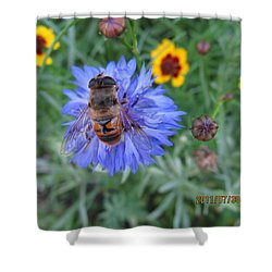 Shower Curtain featuring the photograph Afternoon Feeding by Tina M Wenger