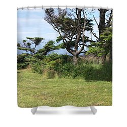 Afternoon Magic Shower Curtain