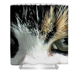Aged Eyes Shower Curtain by Rory Sagner