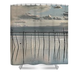 Albufera Gris. Valencia. Spain Shower Curtain