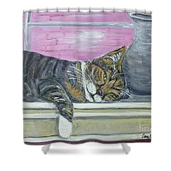 Alex On Windowsill  Shower Curtain by Ania M Milo