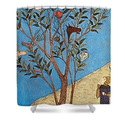 Alexander The Great At The Oracular Tree Shower Curtain by Photo Researchers