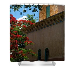 Alhambra Water Tower Windows And Door Shower Curtain