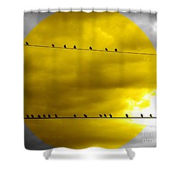 All Around The World Shower Curtain by France Laliberte