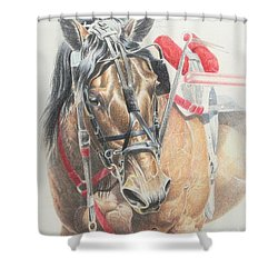 All Heart Shower Curtain by Carrie L Lewis