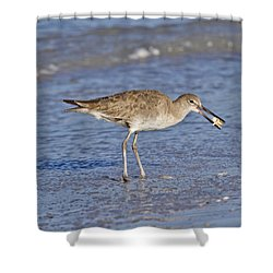 All In A Day Shower Curtain
