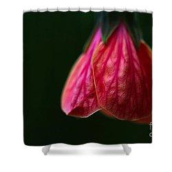 All In Vein Shower Curtain