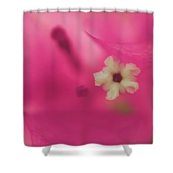 All That I Ever Was Shower Curtain by Laurie Search