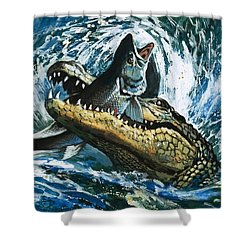 Alligator Eating Fish Shower Curtain