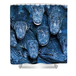 Alligators Shower Curtain by Gary Meszaros and Photo Researchers