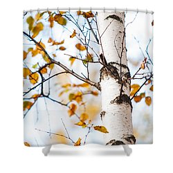 Almost Naked. Shy Girl Shower Curtain by Jenny Rainbow