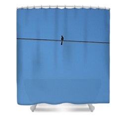 Alone At Last Shower Curtain by Kume Bryant