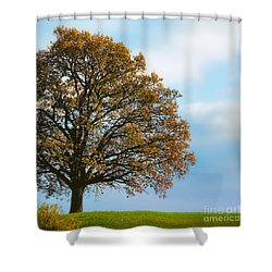 Alone On The Hill Shower Curtain