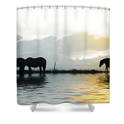 Alone Shower Curtain by Susan Kinney