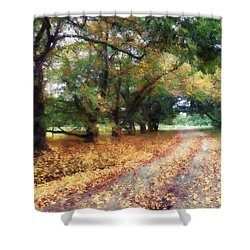 Along The Path Under The Trees Shower Curtain by Susan Savad