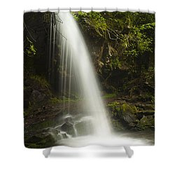Alongside Grotto Falls Shower Curtain