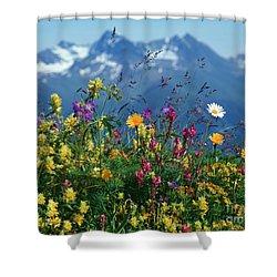 Alpine Wildflowers Shower Curtain by Hermann Eisenbeiss and Photo Researchers