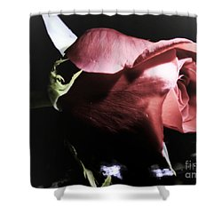 Shower Curtain featuring the photograph Always And Forever 2 by Janie Johnson