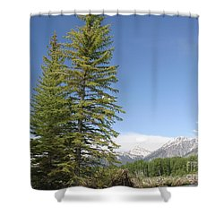 America The Beautiful Shower Curtain by Living Color Photography Lorraine Lynch