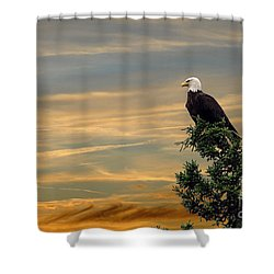 Shower Curtain featuring the photograph American Eagle Sunset by Dan Friend
