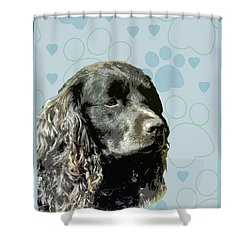 American Water Spaniel Shower Curtain by One Rude Dawg Orcutt