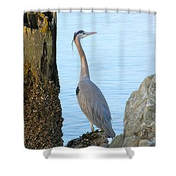 Among Piers Shower Curtain