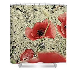 Among The Cross Shower Curtain by Empty Wall